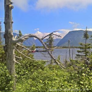 Newfoundland - Gros Morne National Park